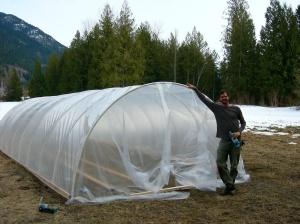 greenhouse - freshly finished