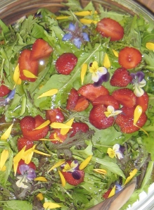 Rootdown Salad mix with seasonal berries