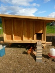 Completed mobile chicken coop #2 for the conformist chickens