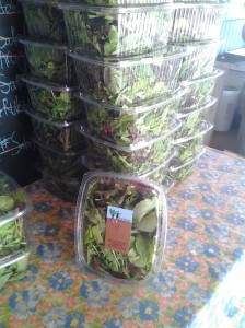 Salad greens packed for grocery store sales