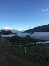 El Huerto de Cuatro Estaciones, Aysen Region, Chile